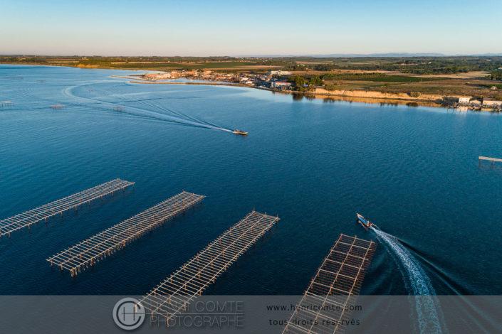 Parcs à huîtres étang de Thau photo drone