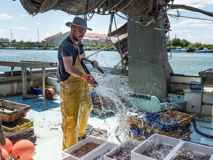 Retour de pêche - Criée d'Agde
